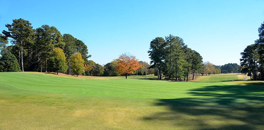 Rich Tree Service Golf Course Tree Service